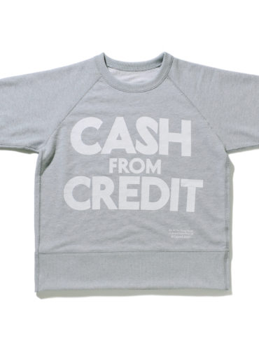 CASH FROM CREDIT